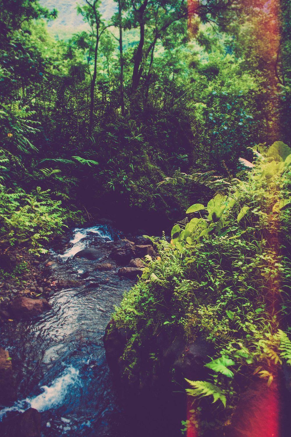 Séance photo portrait Tahiti, Rachelle par Marc Gérard Photography