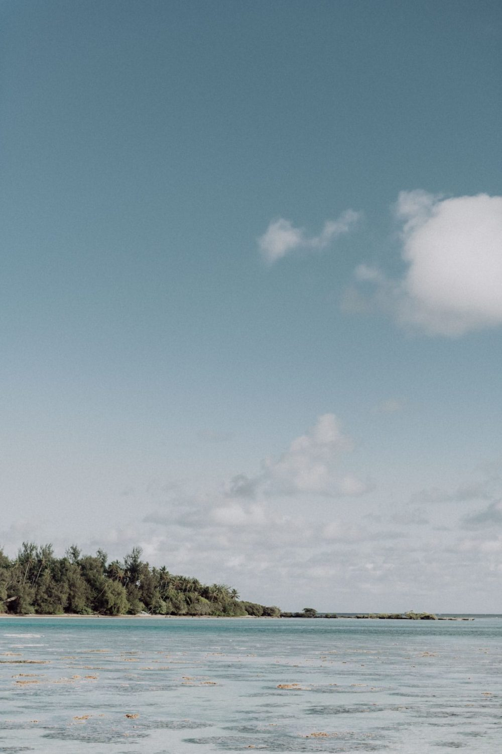 Babymoon in Moorea photoshoot